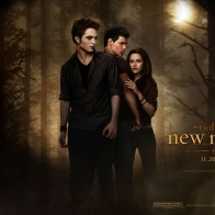 The Twilight New Moon Wallpaper