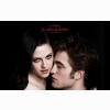The Twilight Saga Breaking Dawn Part 1 Wallpaper 2