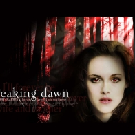 The Twilight Saga Breaking Down Wallpaper