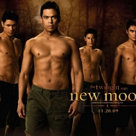 The Twilight Saga New Moon Wallpaper