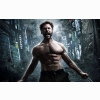 The Wolverine 2013 Latest Hd Wallpaper