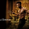 Download The Wolverine 2013 Movie HD & Widescreen Games Wallpaper from the above resolutions. Free High Resolution Desktop Wallpapers for Widescreen, Fullscreen, High Definition, Dual Monitors, Mobile
