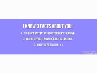 Three Facts About You Cover