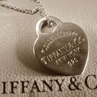 Tiffany Necklace Cover