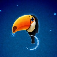 Toucan Bird Wallpapers