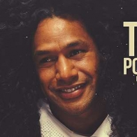 Troy Polamalu Cover