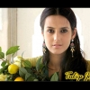 Download tulip joshi wallpaper, tulip joshi wallpaper  Wallpaper download for Desktop, PC, Laptop. tulip joshi wallpaper HD Wallpapers, High Definition Quality Wallpapers of tulip joshi wallpaper.