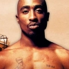 Download tupac cover, tupac cover  Wallpaper download for Desktop, PC, Laptop. tupac cover HD Wallpapers, High Definition Quality Wallpapers of tupac cover.