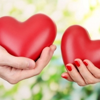 Two Heart Love Wallpapers Download