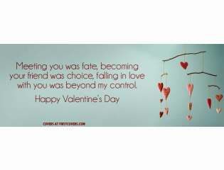 Valentines Day Quote Cover