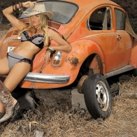 Volkswagen Beetle Background Wallpaper