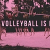 Download volleyball is everything cover, volleyball is everything cover  Wallpaper download for Desktop, PC, Laptop. volleyball is everything cover HD Wallpapers, High Definition Quality Wallpapers of volleyball is everything cover.