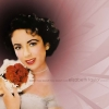 Download we will miss you forever elizabeth taylor wallpaper, we will miss you forever elizabeth taylor wallpaper  Wallpaper download for Desktop, PC, Laptop. we will miss you forever elizabeth taylor wallpaper HD Wallpapers, High Definition Quality Wallpapers of we will miss you forever elizabeth taylor wallpaper.