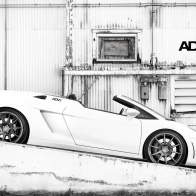 White Gallardo Wallpaper
