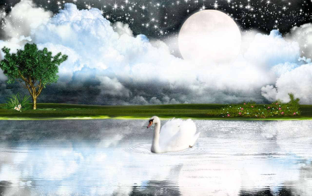 White Goose Hd Wallpaper 3 : Hd Wallpapers