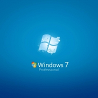 Windows 7 Professional Wallpapers