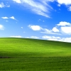 Download windows xp bliss wallpapers, windows xp bliss wallpapers Free Wallpaper download for Desktop, PC, Laptop. windows xp bliss wallpapers HD Wallpapers, High Definition Quality Wallpapers of windows xp bliss wallpapers.