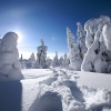 winter in finland,nature landscape Wallpapers, nature landscape Wallpaper for Desktop, PC, Laptop. nature landscape Wallpapers HD Wallpapers, High Definition Quality Wallpapers of nature landscape Wallpapers.