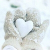 Download winter love cover, winter love cover  Wallpaper download for Desktop, PC, Laptop. winter love cover HD Wallpapers, High Definition Quality Wallpapers of winter love cover.