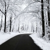 winter road,nature landscape Wallpapers, nature landscape Wallpaper for Desktop, PC, Laptop. nature landscape Wallpapers HD Wallpapers, High Definition Quality Wallpapers of nature landscape Wallpapers.