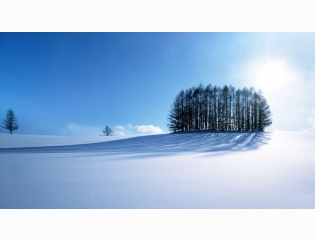 Winter Scenery Wallpapers