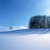 winter scenery,nature landscape Wallpapers, nature landscape Wallpaper for Desktop, PC, Laptop. nature landscape Wallpapers HD Wallpapers, High Definition Quality Wallpapers of nature landscape Wallpapers.
