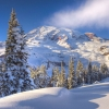 winter time washington,nature landscape Wallpapers, nature landscape Wallpaper for Desktop, PC, Laptop. nature landscape Wallpapers HD Wallpapers, High Definition Quality Wallpapers of nature landscape Wallpapers.
