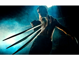 Wolverine Wallpapers