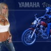Download yamaha xv 535 virago wallpaper, yamaha xv 535 virago wallpaper  Wallpaper download for Desktop, PC, Laptop. yamaha xv 535 virago wallpaper HD Wallpapers, High Definition Quality Wallpapers of yamaha xv 535 virago wallpaper.