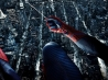 amazing spider man wallpapers