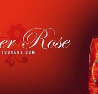 amber rose cover