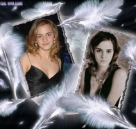 emma watson wallpaper hd wallpapers