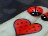 facebook timeline cover photo 1025