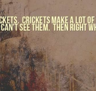 haters are like crickets cover