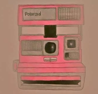 pink polaroid cover