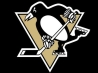 pittsburgh penguins cover