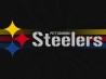 pittsburgh steelers cover