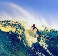 surfing cover