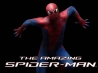 the amazing spider man movie 2012 wallpapers